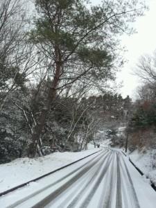2013-01-17 10.32.53.jpg雪道